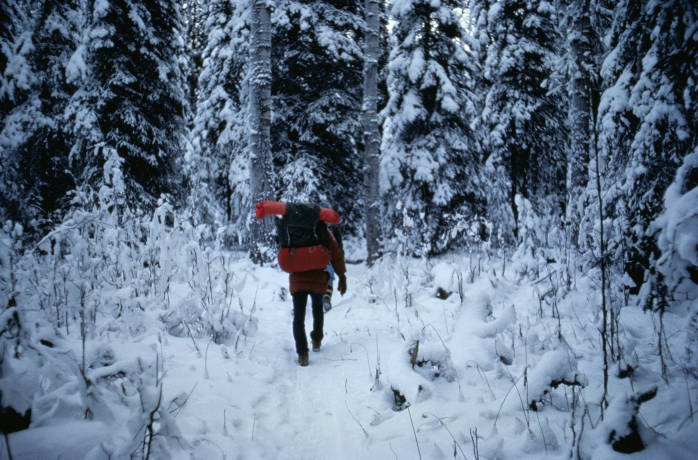 Winter Wonderlands 4 Wild Winter Adventures