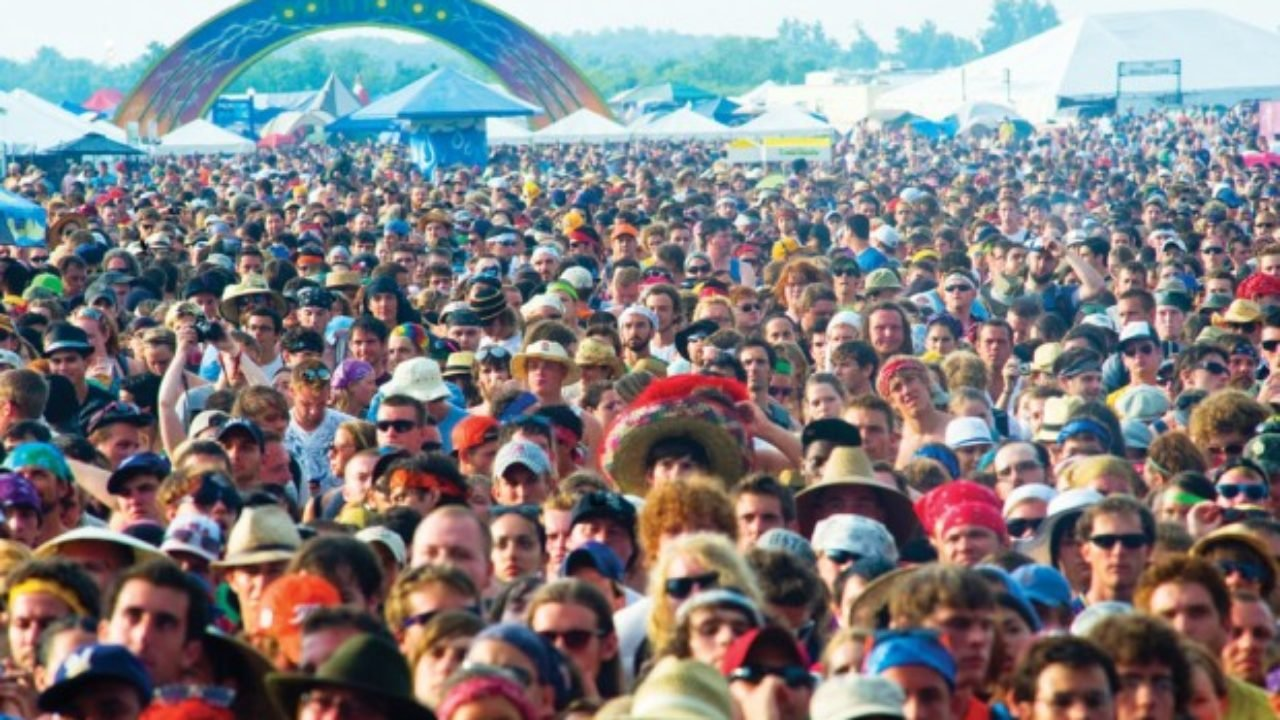 How to Survive Bonnaroo
