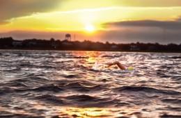 Kathleen Wilson swims around Charleston, S.C. Photo: Gary McElveen