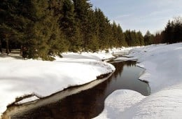 snowmelt gathers in red creek, which flows through the heart of the dolly sods wilderness.