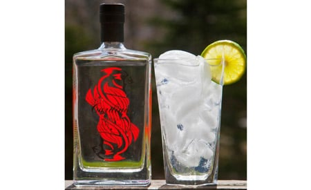 Cardinal Gin (left) and it's perfect pairing (right).