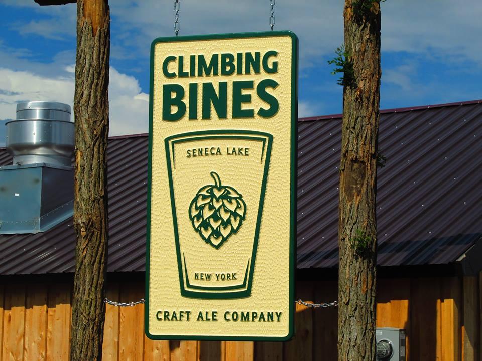 climbing bines 1