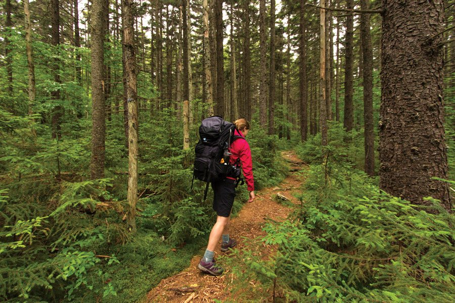 Wilderness at 50: 24 Hours in the Cranberry Wilderness