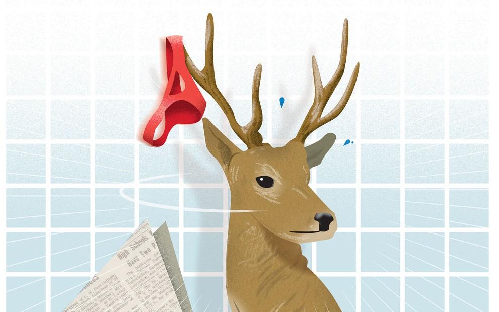 deer_FIX