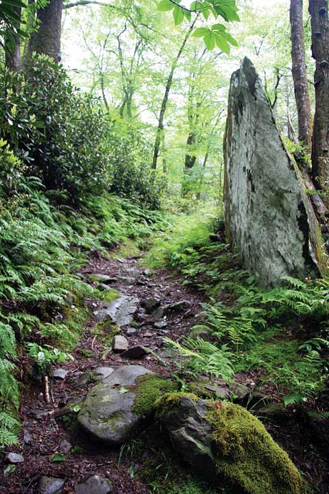 Indian-Gap-Trail---Road-Pro