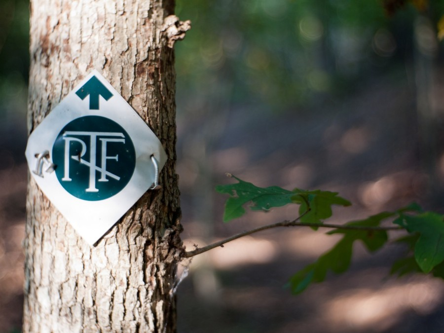 The Rivanna Trail in Fluvanna County, Virginia