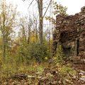 Abandoned Fireplace