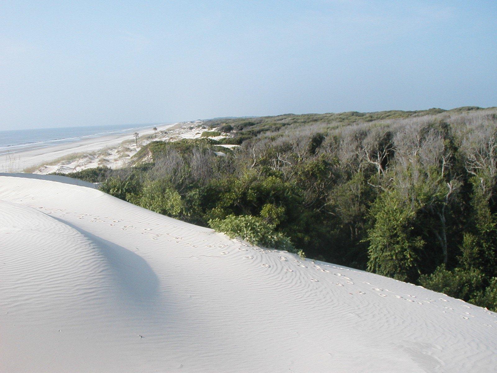 cumberland-dunes-2