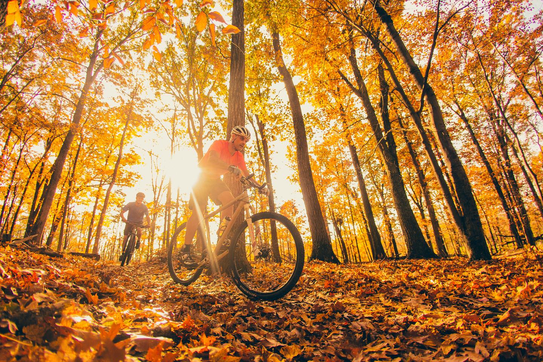 fall_mountain_biking_3196829c
