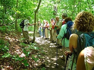 Valley History Explorer Moderate Hike Series Interest Meeting