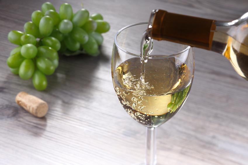 TGI Monday (Sauvignon Blanc) Sale & Tasting