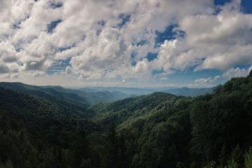 Lawsuit Against Forest Service