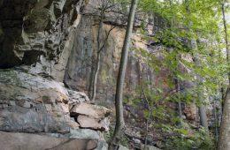 New Virginia Bouldering Park