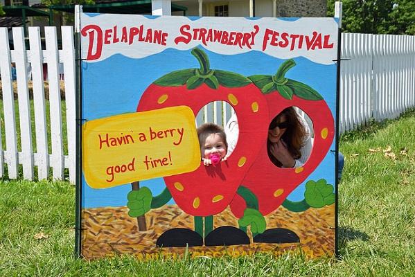 Delaplane Strawberry Festival